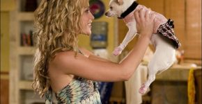 Beverly Hills Chihuahua (2008) - Piper Perabo