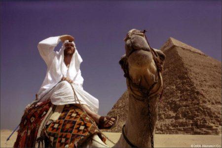 Where in the World is Osama Bin Laden? (2008)