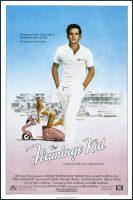 The Flamingo Kid Movie Poster (1984)