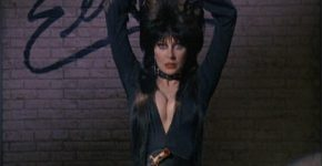 Elvira: Mistress of the Dark (1988) - Cassandra Peterson